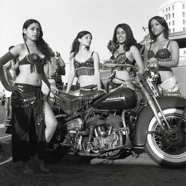 Harley Davidson, from the series Harley Davidson